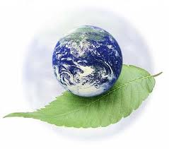 Экология Геотехника